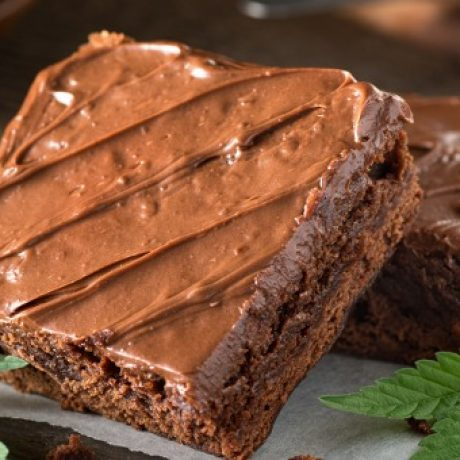 DECADENT GOURMET CANNA BROWNIES